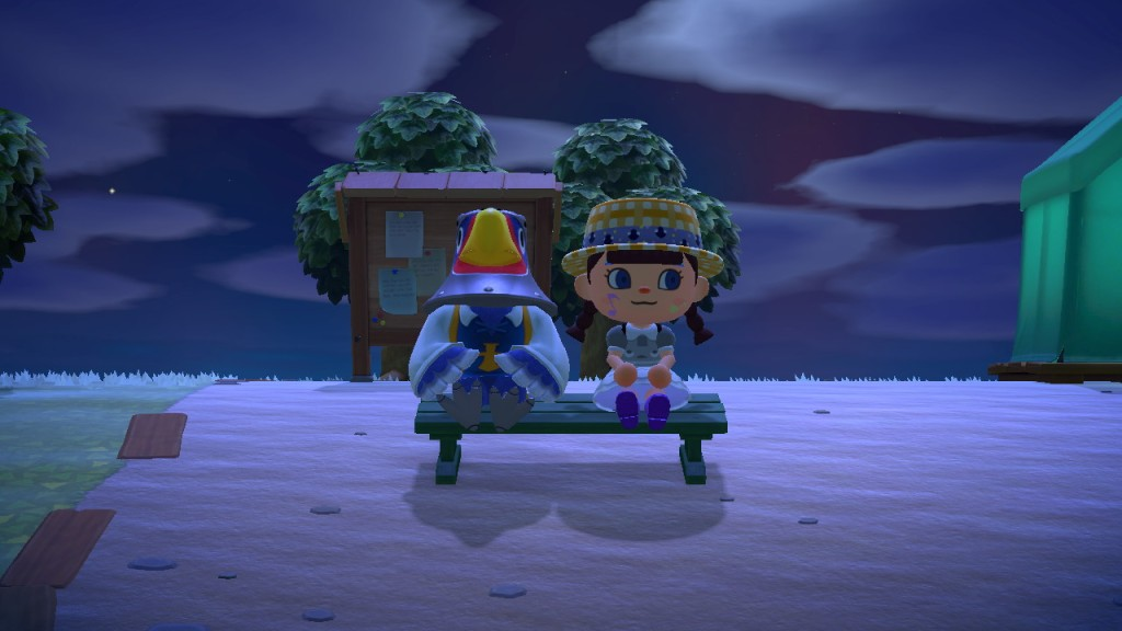 An image from Megan's Animal Crossing game, showing a villager who is an eagle (left) and her character (right) sitting together at night